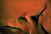 RustVision1486web