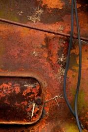 RustVision4920web